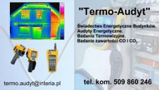 Termo Audyt